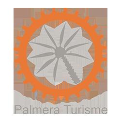 logo Palmera