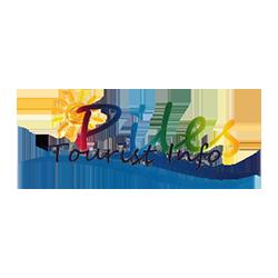logo Piles
